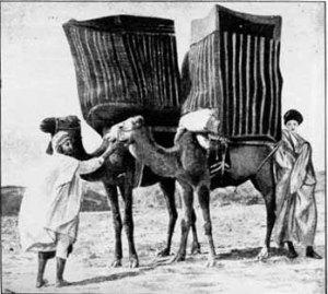Hevdec-kadın taşıma